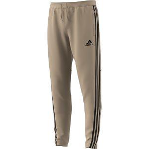 Adidas Tan Tr Pant