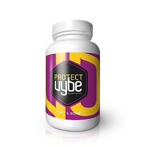 Vybe Protect